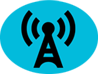 Logo: Radio Airplay Experts